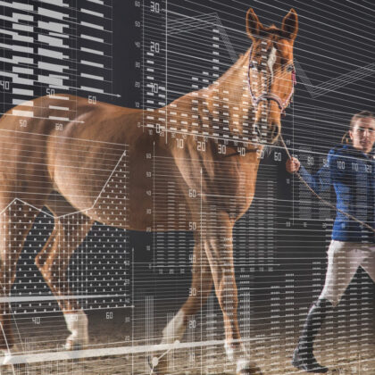 race horse with data analytics graphics overlay